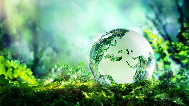 Sustainable investing: Assessing the choices